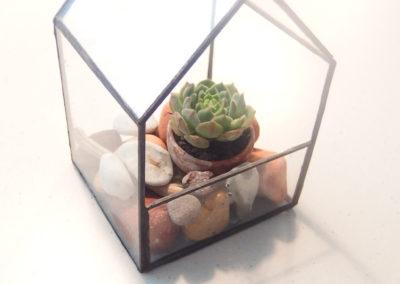 Klaasmaja sukulentidele 10x10x15cm